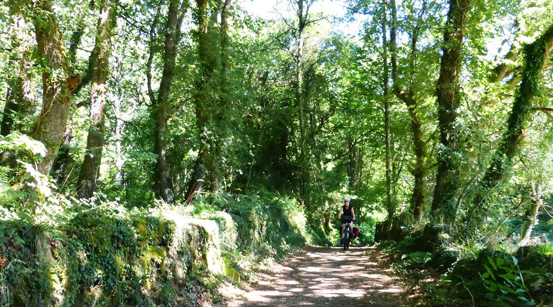 Camino de Santiago bike tour. Corredoira | BIKING THROUGH SPAIN