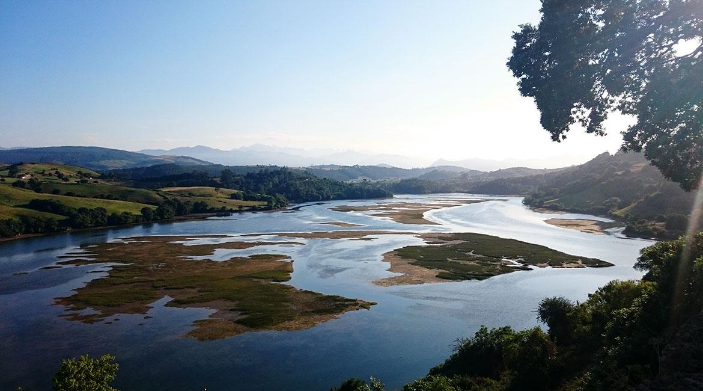 Camino de Santiago bike tour. Marshland | BIKING THROUGH SPAIN