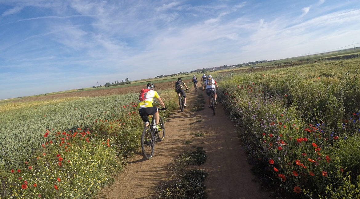 Camino de Santiago bike tour. Andalucia | BIKING THROUGH SPAIN