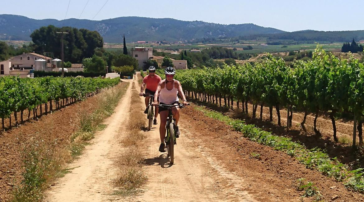Penedes vineyards on bike. Caves Avinyó 3 | BIKING THROUGH SPAIN