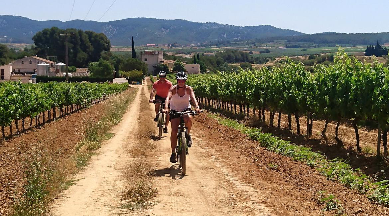 Penedès vineyards on bike. Avinyó | BIKING THROUGH SPAIN