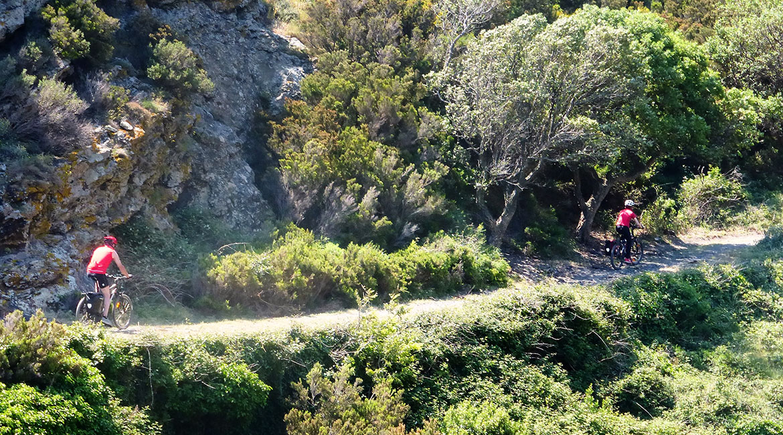 Cycling through Emporda. GR | BIKING THROUGH SPAIN